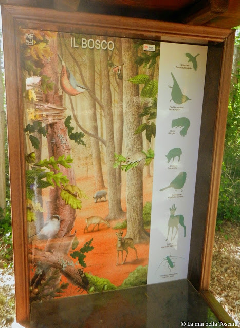 Giardini botanici di Toscana