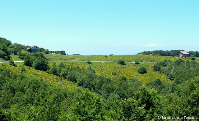 Strada panoramica di montagna Toscana
