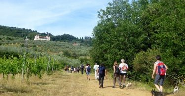 Camminate in Valdarno