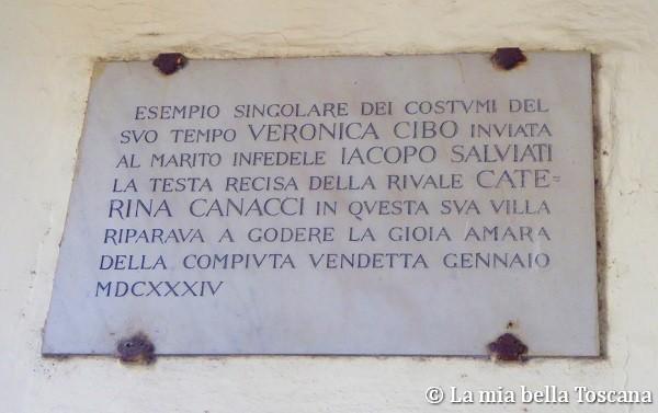 Veronica Cybo