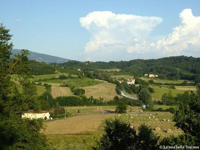 Campagna Toscana d'estate