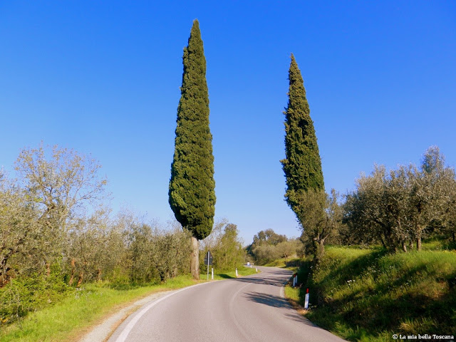 Strada dei Setteponti