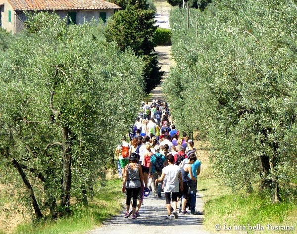 Camminate in Toscana