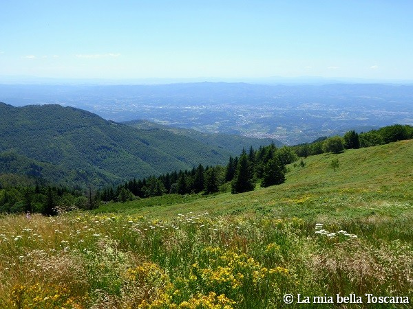 Montagna Toscana