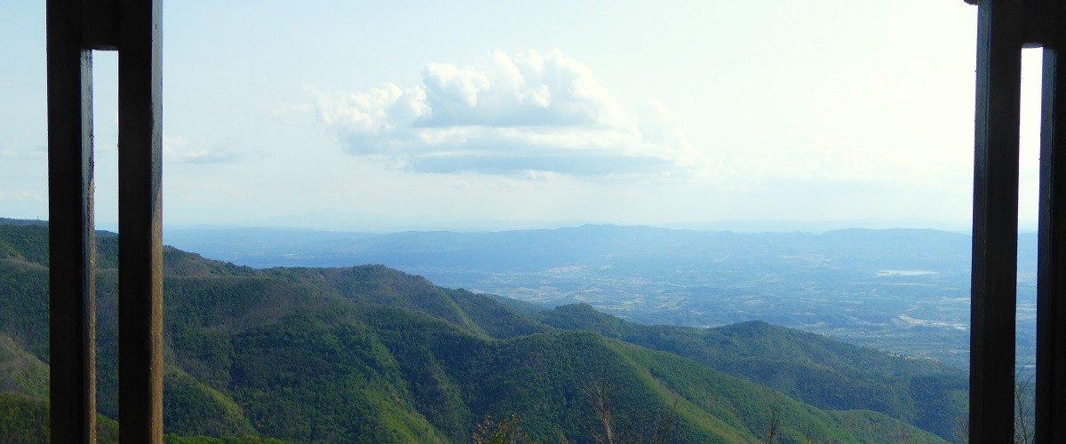 Foresta Sant'Antonio