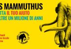 Raccolta fondi restauro mammuthus
