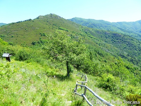 Escursioni Pratomagno