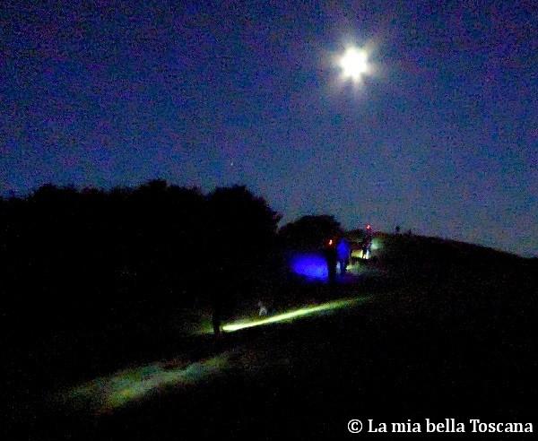 Notturna in Pratomagno