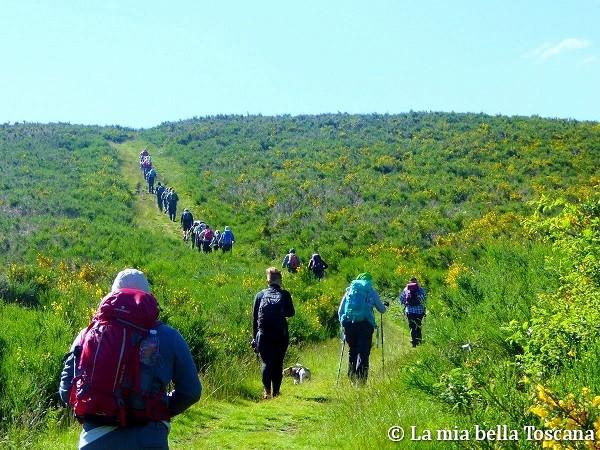 Camminate tra Valdarno e Casentino