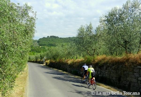 Valdarno in bicicletta