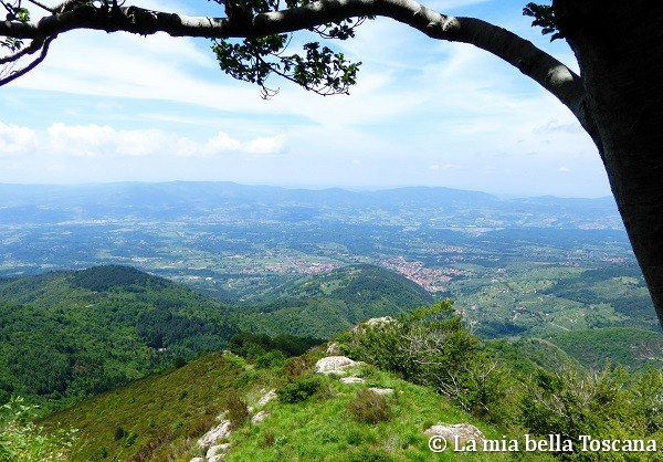 Panorama sul Valdarno