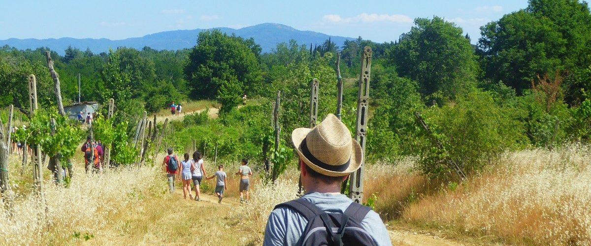 Camminare in Valdarno