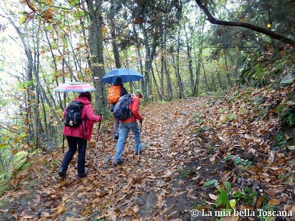 Camminare con la pioggia