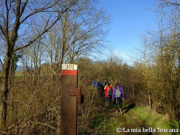 Sentiero del Forestello