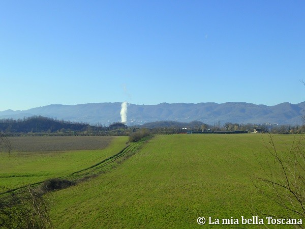 Panorama Forestello