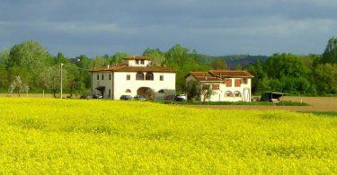 casa colonica Valdarno