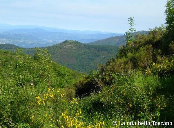 Panorama da Montrago